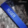 Close up personalization Coastal Pet Standard Nylon Dog Collar Personalized (00301E) Blue BLU