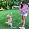 Miller and Mom Katherine Enjoying A Playdate at the park with Coastal Pet Pro Fit Rope Ball dog toy