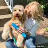 Cooper and Mom Stephanie Playing With His Pro Fit Stick Dog Toy