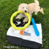 Zoey loves playtime with her Coastal Pet Pro Fit Mega Ring and Stick Dog Toy