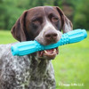 Ruger loves his Coastal Pet Pro Fit Stick Dog Toy