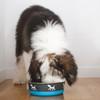 Maslow™ Design Series Pup Bowl (88450)  Blue