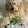 Hamilton models Safari by Coastal Pet Self-Cleaning Slicker Brush