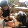 Henry and Mom using Safari by Coastal Professional Dog Nail Trimmer