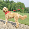 Coastal Pet Comfort Soft Adjustable Dog Harness In Red On Dog