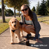 Its a great day for a walk wearing Coastal Pet Comfort Soft Wrap Reflective Adjustable Dog Harness in black on Mylo