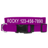 Coastal Pet Plastic Buckle Adjustable Nylon Dog Collar Personalized (6301E)