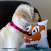 Mia wearing her Coastal Pet Martingale Adjustable Nylon Dog Collar Personalized (6407E) Pink Flamingo PKF