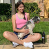 Maggie wearing Coastal Pet Pro Reflective Dog Collar