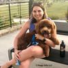 Charlie Dood and His Mom Enjoying An Evening at the dog park wearing Coastal Pet Lazer Bright Reflective
