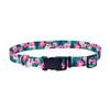 Coastal Pet Styles Adjustable Dog Collar (6321)