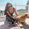 Mylo wearing Ribbon Dog Leash Coastal Pet