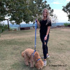 Sammy and Mom Walking WIth K9 Explorer Harness Collar and Leash