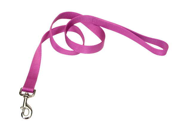 Coastal Pet Nylon Dog Leash (304)