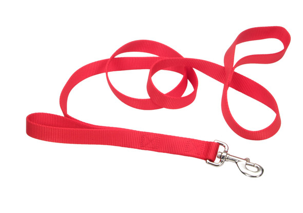 Coastal Pet Loops 2 Double Handle Nylon Dog Leash (904H)