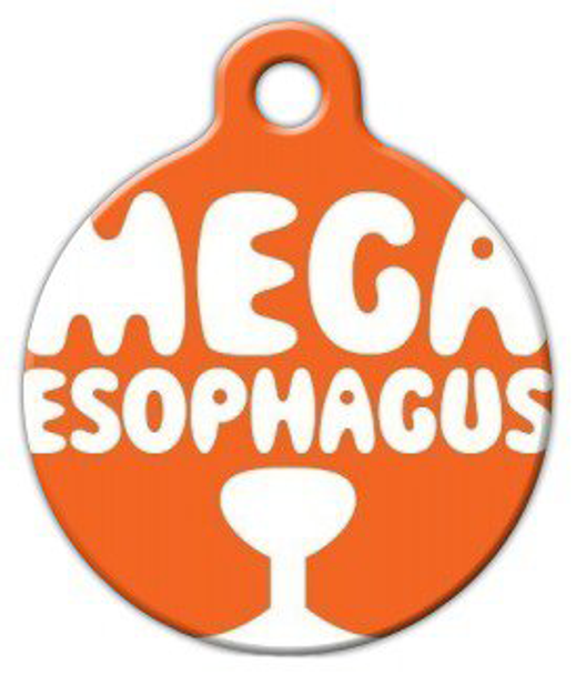 Dog Tag Art Megaesophagus Dog Pet ID Dog Tag