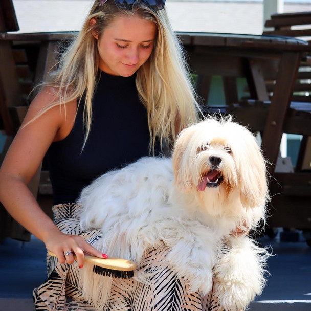 Safari® Bristle Dog Brush with Bamboo Handle in use
