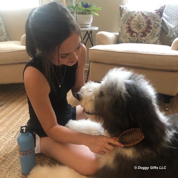 Henry and Mom using Safari Pin and Bristle Combo Dog Brush With Bamboo Handle