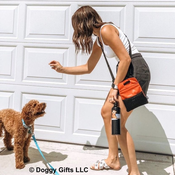 Kona is learning tricks from his mom Coastal Pet treat and training bag