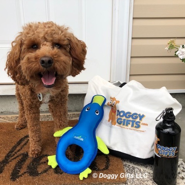 konatheminidood loves his Coastal Pet Rascals Fetch Duck Dog Toy