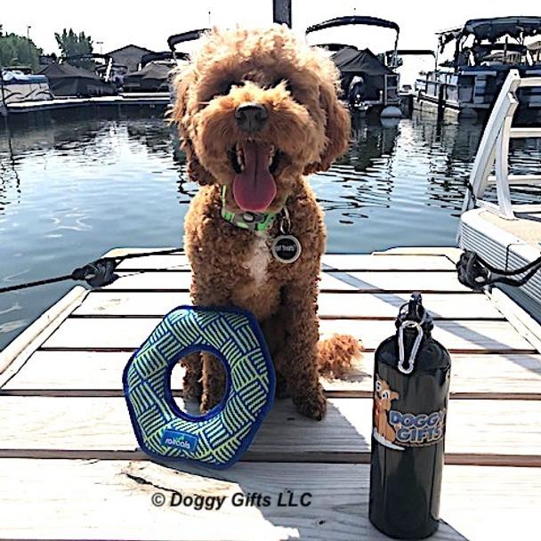 konatheminidood loves his Coastal Pet Rascals Hexagon Dog Toy