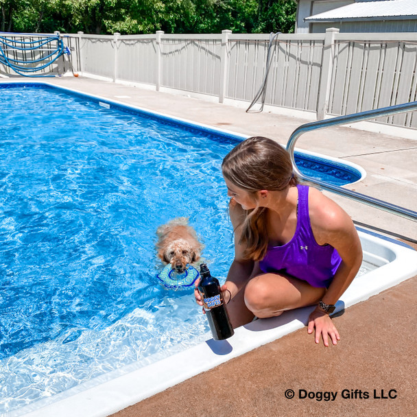 Pool day fun with Mylo and his Coastal Pet Rascals Fetch Hexagon dog toy