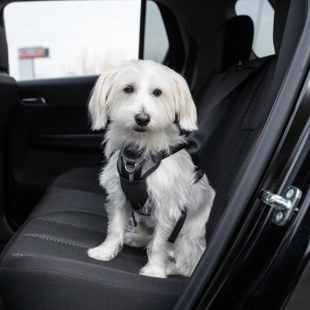 Bergan® Auto Harness (88200) size small dog