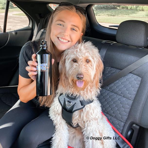 Mylo wearing Bergan Auto Harness and Coastal Pet Rope Leash