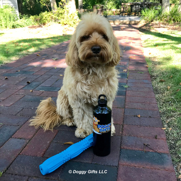 Miller loves his Pro Fit Stick Dog Toy