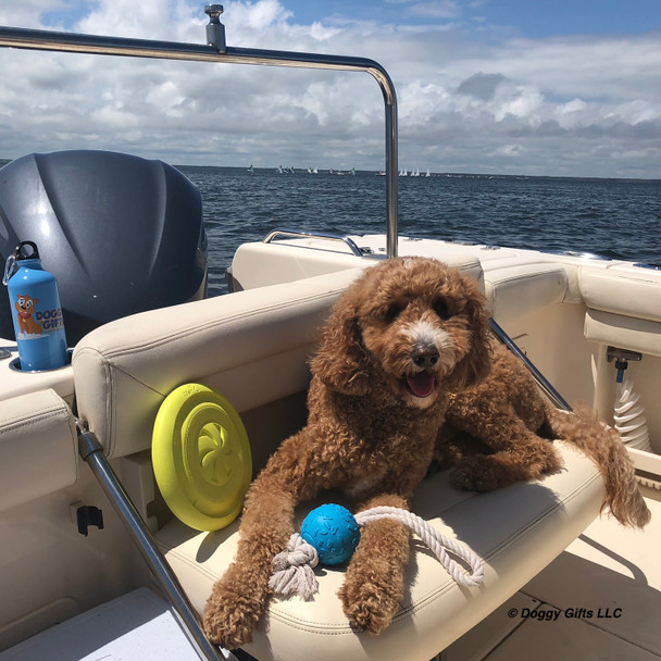 Charley boating day with Pro Fit Dog Toys