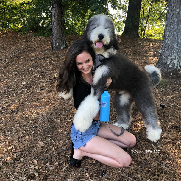Henrythesheepadoodle and Mom having a ball in his Coastal Pet Inspire