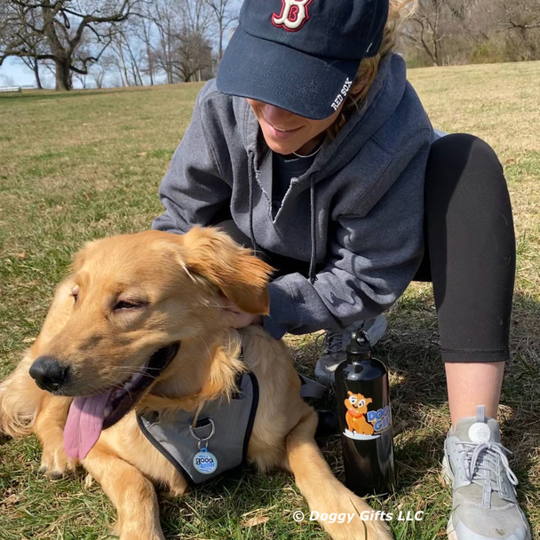 good.boy.nash and his mom playing in the park wearing coastal pet inspire leash and harness and dog tag art good boy tag