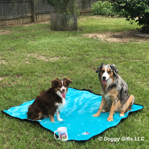 Nessie and Aspen love their Alcott Adventure Dog Blanket