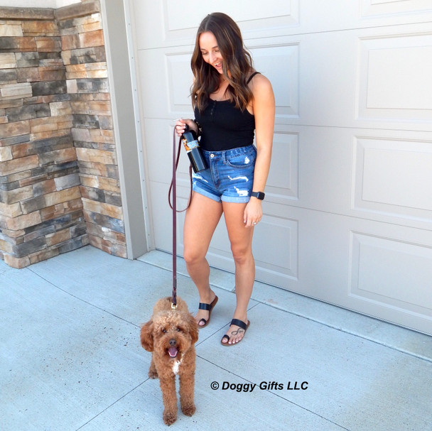 Kona and his mom going for a walk wearing Coastal Pet Circle T Latigo Brass Hardware Collar and leash Set