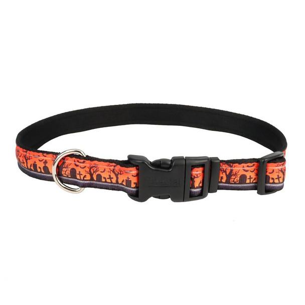Celebration Halloween Dog Collars (06428PHN)