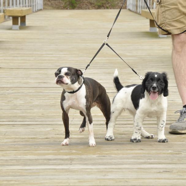 Coastal Pet 2 Dog Adjustable Nylon Coupler (369) Black