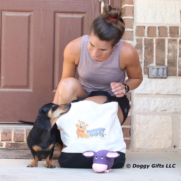 Sadie wants her Rascals Grunt dog toy