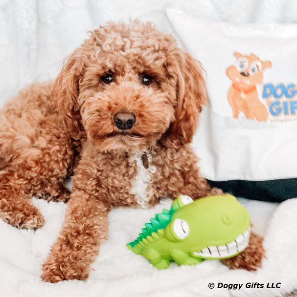 Kona and his Rascals Grunt Dog Toy