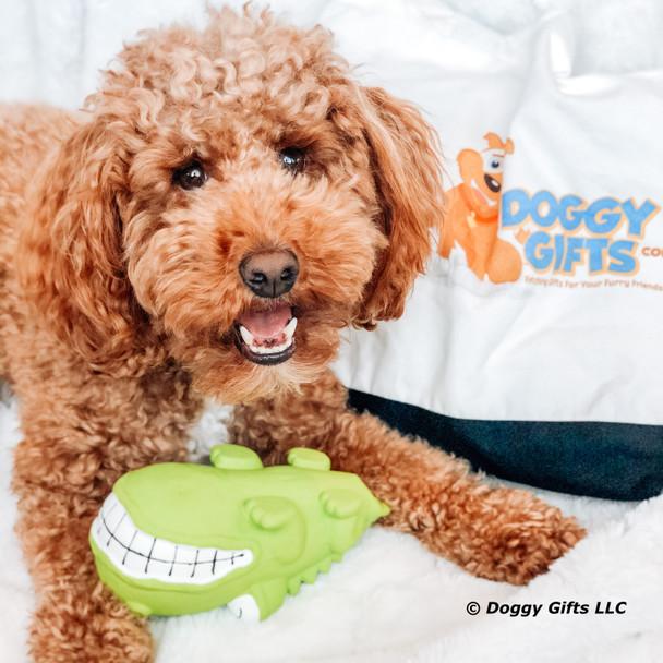 Kona loves his Rascals Grunt Dog Toy