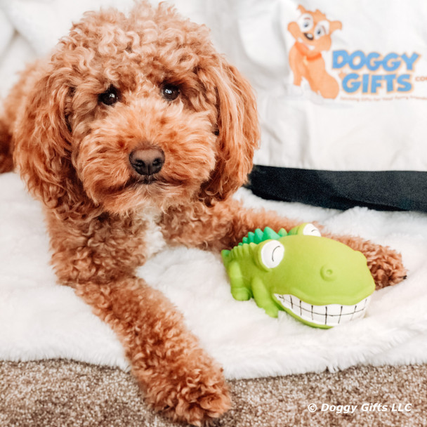 Kona loves the Rascals Grunt Dog Toy
