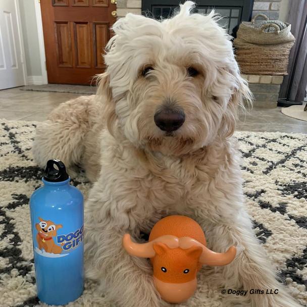 Hammy loves his Rascals Grunt Dog Toy Big Horn Bull