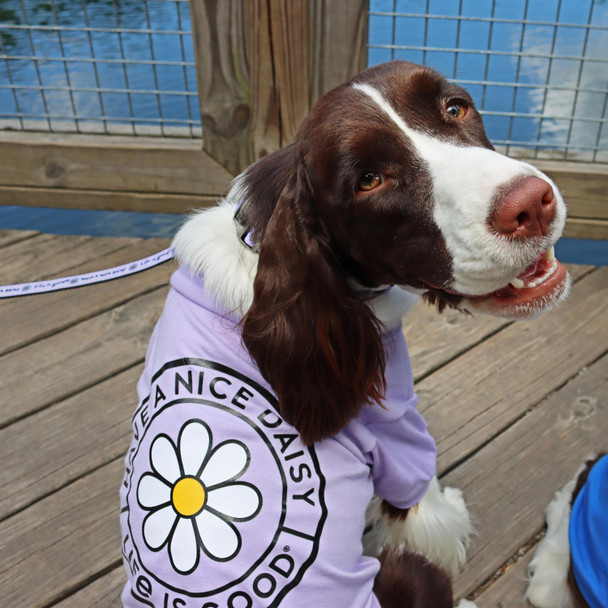 Life Is Good® Dog T Shirt on dog wearing lilac