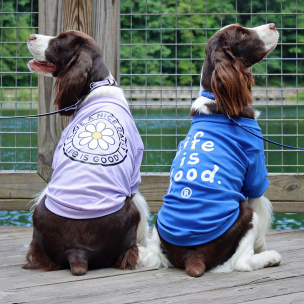 Life Is Good® Dog T Shirt shop at doggygifts.com