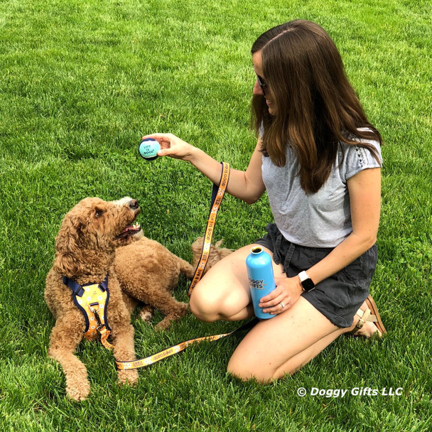 Charley Girl Playing Ball Life Is Good  from doggygifts
