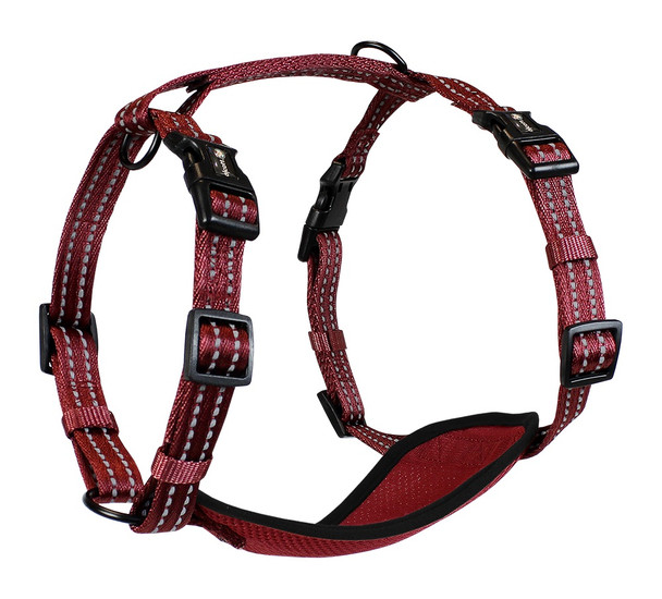 Alcott™ Adventure Harness (HNS) Red