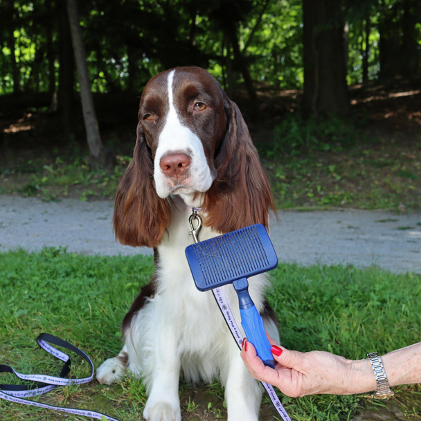 Life Is Good Self Cleaning Slicker Brush Using On Dog
