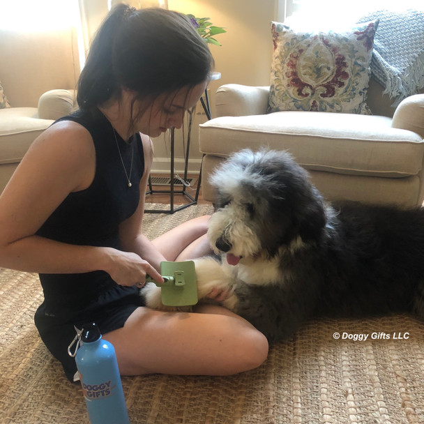 Henry and Mom using Safari Self Cleaning Slicker Dog Brush