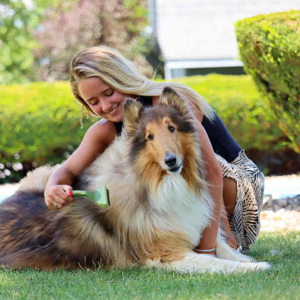 Safari® Shed Magic® De-Shedding Tool Medium to Long Hair Dog