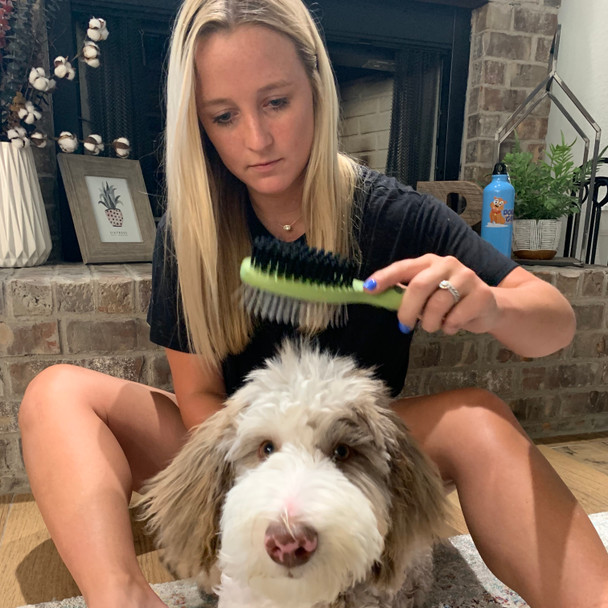 Reggie loves being groomed with Safari Pin and Bristle Combo Brush