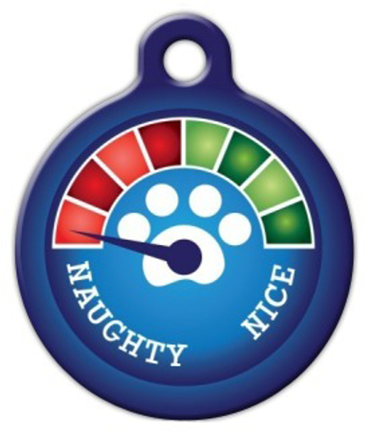 Dog Tag Art Christmas Meter Naughty! Pet ID Dog Tag